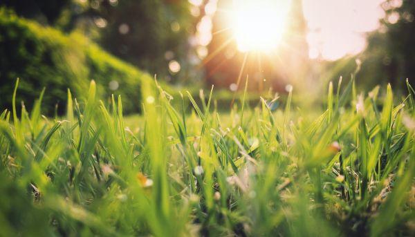 Leer meer over de lente met James & Marie